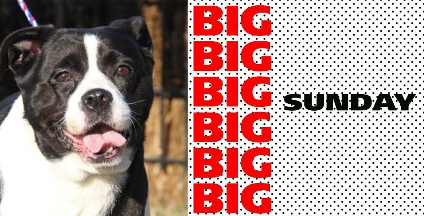 BIG Sunday April 2016